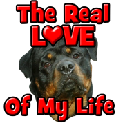 Rottweiler, The Real Love Of My Life