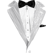 Realistic Tuxedo bow tie and sear sucker