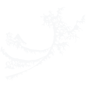 White Surfing Wave Design