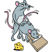 It's a mouse screwing another mouse, in a mousetrap