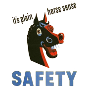 horse sense funny safety shirt