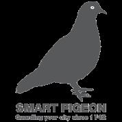 Smart pigeon