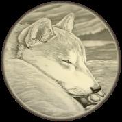 Shiba Inu & Husky Dog Art Shirts & Gifts