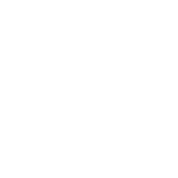 Evolution Of Bike - in White