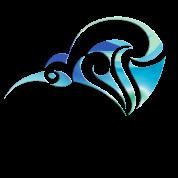 Aotearoa Kiwi