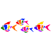 colorful fish (light shirts)
