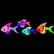 Colorful fish (dark shirts)