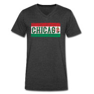 T-Shirts ~ Men's V-Neck T-Shirt by Canvas ~ Chicago Hungarian Flag