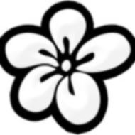 hawaiibookblog