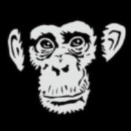 MonkeyLoveShirts