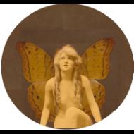 fairiepatter