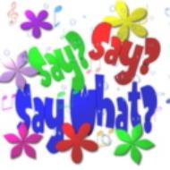 SaySaySayWhat